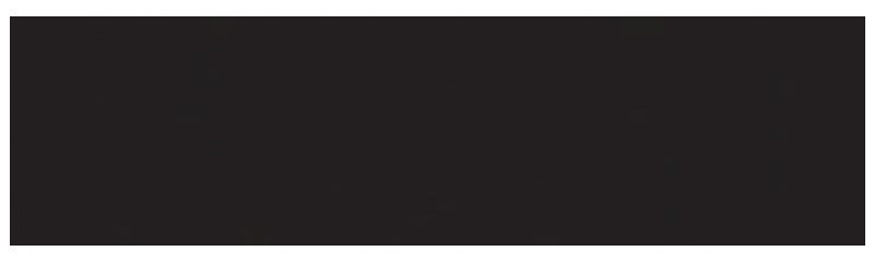 KORG 800