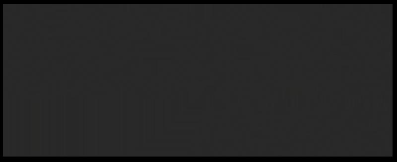 Moog Audio 800